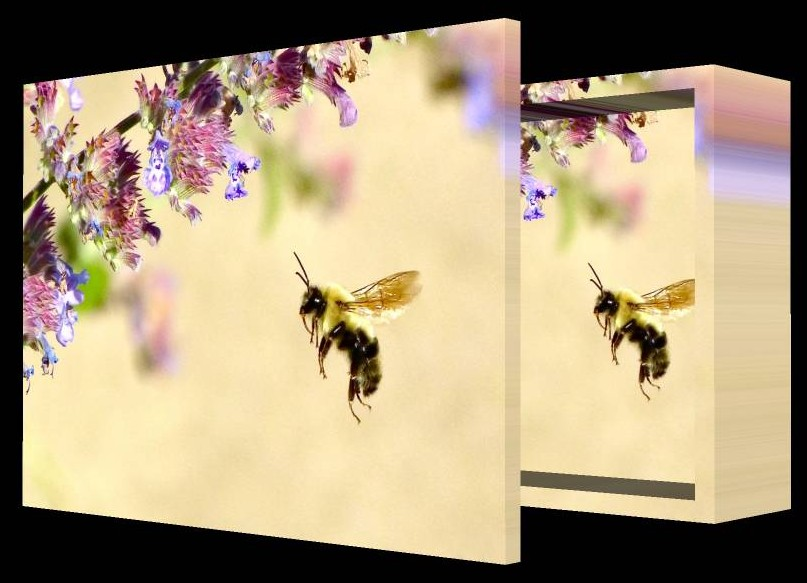 Impressionist Bee box with lid - by Tony Karp - Art in the 3rd Dimension